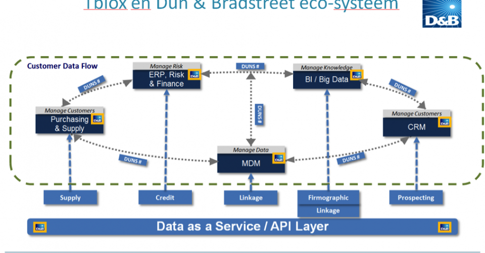 Master data and risk management with Dun&Bradstreet